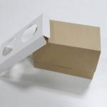 กล่องคัพเค้ก 2 ชิ้น / กล่องขนม ลายคราฟท์ พร้อมฐานรองคัพเค้กแบบ 2 ช่อง