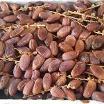 ประโยชน์ของอินทผาลัม สรรพคุณของผลไม้มหัศจรรย์ จากแดนอาหรับ